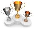 Siegerehrung Preisverleihung