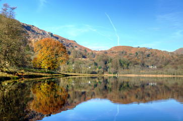 Autumn tree reflected in Grasmere