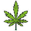 cannabis vector drawing