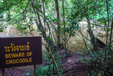 Jungle and crocodile warning sign at Khao Yai National Park