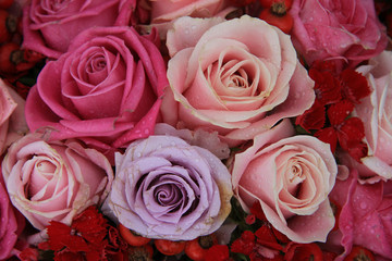 Bridal roses in pink and purple
