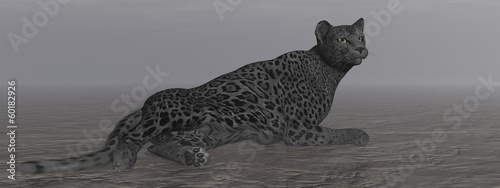 Black jaguar resting - 3D render