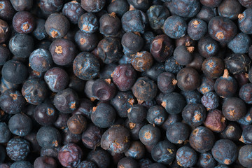 Wacholderbeeren, Juniper Berries
