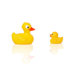 baby bath toy rubber duck and duckling