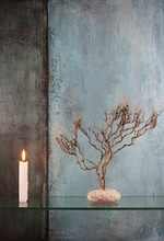 Branches et bougie