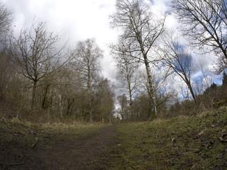Nagshead RSPB Reserve, Gloucestershire