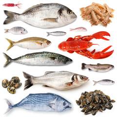 collage di pesce fresco