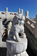 a marble figure of a lion in the forbidden city in Beijing, Chin