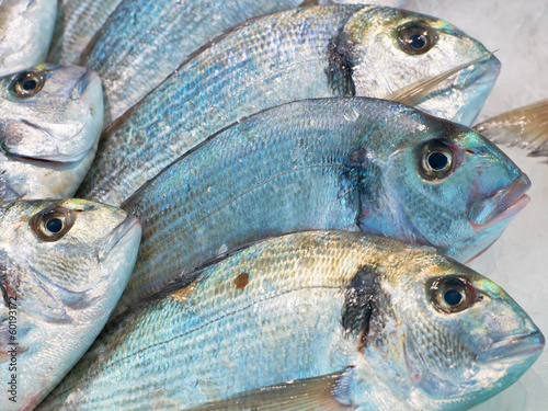 Sea-bream fish for sale on market
