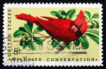 Postage stamp USA 1972 Cardinal, Passerine Bird