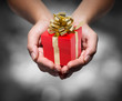 give your gift
