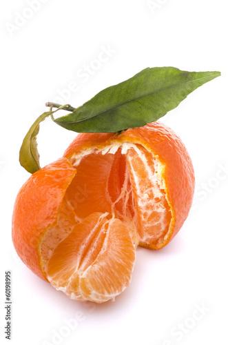 clementina su sfondo bianco