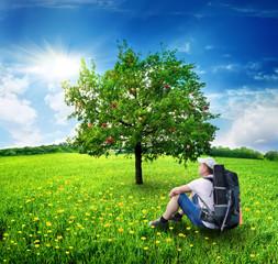 Tourist and apple-tree