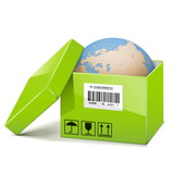 Vector Globe in Green Box
