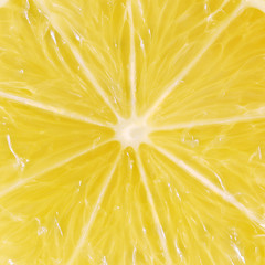 Yellow lemon detail background