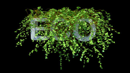 eco word concept
