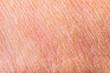 Texture of human skin