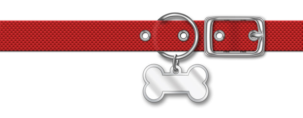 Red Nylon Animal Collar With Tag