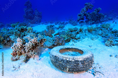 Fotobehang Koraalriffen Marine pollution in the tropical reef of the red sea