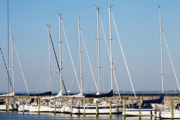 Sailing boats in harbor