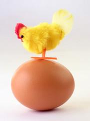 Hen on egg