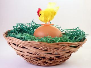 Hen on egg in basket