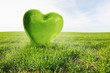 Green heart on the grassy field. Love, environment, nature