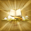 Open book, old style vector background