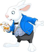 Lapin blanc avec la montre de poche