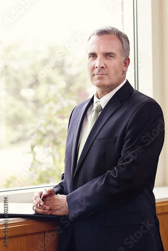 Mature Businessman Portrait vertical