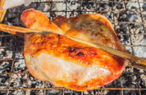 a grilled chicken breasts