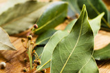 Bay leaves. Soft focus