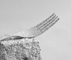 stein-gabel