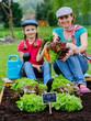 Gardening, planting - family working in vegetable garden