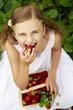 Strawberry season -  girl eating  picked srawberries i