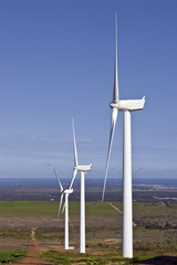 wind turbine making power