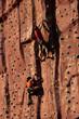 Climbers climbing a rock wall.