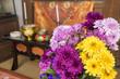 仏前の菊の花々