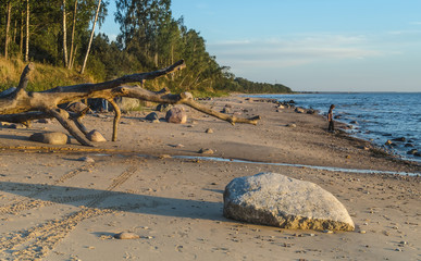 Stony beach near village of Tuja at the Baltic sea