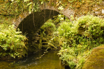 Little Bridge on Torc Mountain, Kerry Ireland