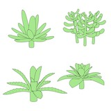 cartoon image of succulent plants
