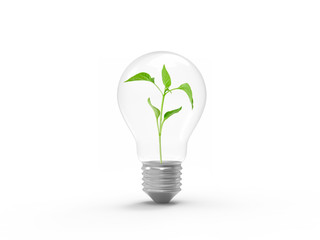 light bulb idea green plant