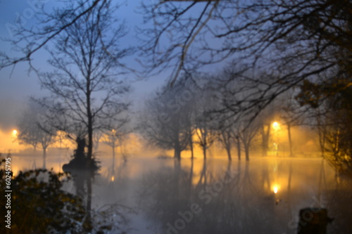flooded foggy park