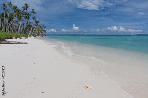 canvas print picture Tropikalna plaża