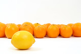 Lemon and Oranges