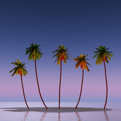 Five coconut palms