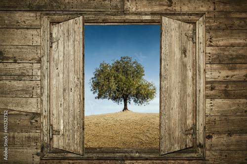 Plakat The Tree Behind the Window