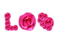 LOVE, Pink rose stop motion