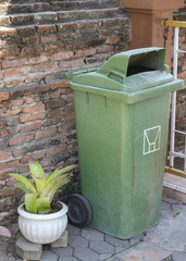 Green bin with ornamental plants