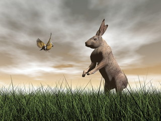 Hare and bird talk - 3D render
